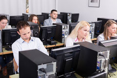 Staff sitting at desks and looking at PC screens Stock Photography