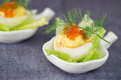 Staffed egg appetizer with red caviar garnish and dill decoratio Stock Photography