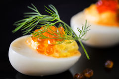 Staffed eggs with red caviar garnish and dill decoration on dark Royalty Free Stock Photo