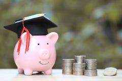 Staffelungshut auf blauem Sparschwein mit Stapel Münzengeld auf Naturgrünhintergrund, Rettungsgeld für Ausbildungskonzept stockfotografie