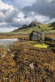 Staffin coastline on Isle of Skye Royalty Free Stock Photo