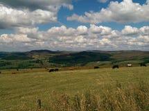 Staffordshire Cumuje Fotografia Stock