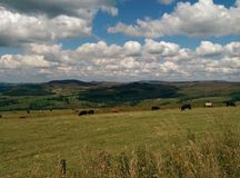 Staffordshire Moors. View Stock Photography