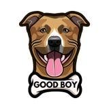 Staffordshire Terrier dog. Bone. Good boy inscription. Staffordshire Terrier portrait. Vector. Staffordshire Terrier dog. Bone. Good boy inscription Stock Photos