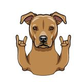 Staffordshire Terrier dog. Rock gesture. Horns. Staffordshire Terrier portrait. Dog breed. Vector. Staffordshire Terrier dog. Middle finger gesture Royalty Free Stock Images