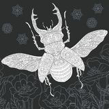 Stag beetle in black and white style stock illustration