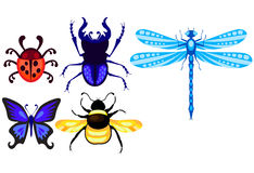 Stag-beetle; dragonfly; ladybug; butterfly and bumblebee Royalty Free Stock Photography