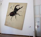 Stag Beetle after Durer Stock Photo