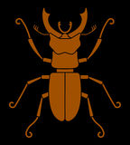Stag beetle Stock Images