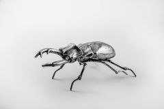 Stag beetle. Silver stag beetle sculpture on white background Stock Photos
