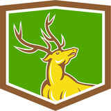 Stag Deer Looking Up Shield Cartoon Stock Image