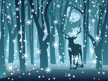 Stag In Winter Forest Royalty Free Stock Photography