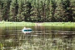 Stag på sjön Royaltyfri Fotografi