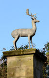 Stag Statue Royalty Free Stock Photos