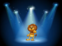 A stage with a brown lion at the center Royalty Free Stock Photo