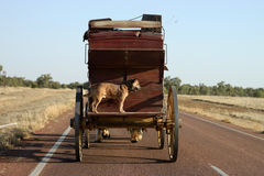 Stage Coach on Highway. A stage coach with dog travels a highway in Outback Australia. Room for your company logo on the back of the coach royalty free stock photos