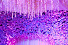 Stage decorationStage decoration Royalty Free Stock Photo