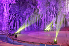 Stage lights with tree background Stock Photos