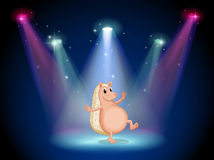 A stage with a molehog dancing Royalty Free Stock Images