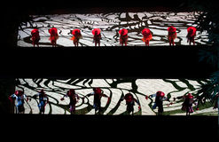 Stage silhouette:The farmer planting. In May 7, 2010, a reflection of Jiangxi original ecological humanities landscape of large style song and dance the wind in Stock Photo