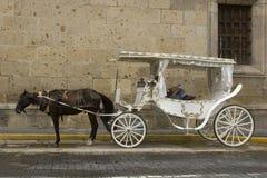 Stagecoach in Guadalajara Lizenzfreie Stockfotos
