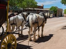 Stagecoach, Main Street, nagrobek, Arizona obrazy royalty free