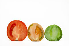 Stages of maturing of a tomato Stock Images