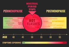 Stages of Menopause Infographic. Stages and symptoms of menopause. Estrogen level average percentage from the birth to the age of eighty years. Vector Stock Images