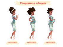 Stages of pregnancy vector illustration of black pregnant woman.african-american pregnant.Changes in a woman`s body in pregnancy. Royalty Free Stock Photography