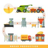 Stages of production of bread, growing cereals, harvesting, bakery equipment, delivery to shop vector Illustration on a. Stages of production of bread, growing stock illustration