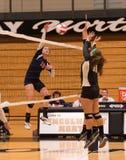 Stagg-Oberschülerin-Volleyballspieler Stockbilder