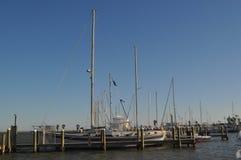 Staggared segelbåtmaster Arkivfoto