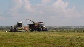 Stagione del raccolto stock footage