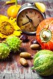 Stagione del raccolto di autunno Fotografia Stock Libera da Diritti