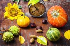 Stagione del raccolto di autunno Immagine Stock