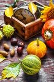Stagione del raccolto di autunno Fotografia Stock