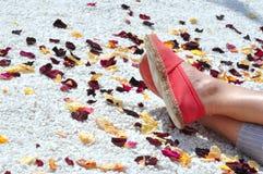 Stagione delle vacanze estive Immagini Stock Libere da Diritti