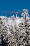 Stagione dello sci sulla montagna di urogallo Fotografia Stock