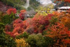 Stagione di autunno di Kyoto Immagini Stock Libere da Diritti