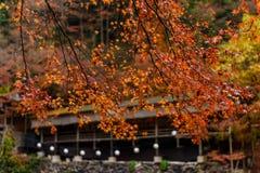 Stagione di autunno di Kyoto Fotografia Stock