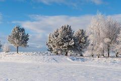 Stagione di inverno Fotografie Stock Libere da Diritti