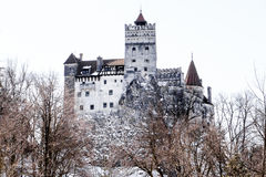 Stagione invernale del castello di Dracula della crusca Fotografia Stock