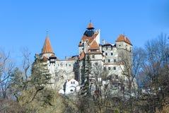 Stagione invernale del castello di Dracula della crusca Fotografie Stock Libere da Diritti