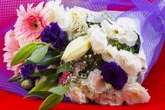 Stagione porpora di colore del gambo dei fiori Immagini Stock Libere da Diritti