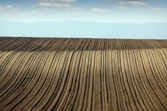 Stagione primaverile arata del paesaggio del terreno coltivabile del campo Immagine Stock