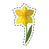 Stagione primaverile del fiore del narciso del fumetto illustrazione di stock