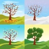 Stagioni dell'albero del fumetto fissate su un fondo del paesaggio della natura Vettore Fotografie Stock