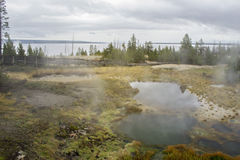 Stagni del geyser Fotografie Stock Libere da Diritti