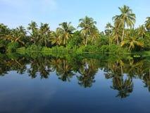 Stagni del Kerala, India Fotografia Stock Libera da Diritti
