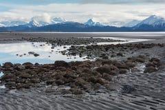 Stagni di bassa marea contro le montagne Immagine Stock